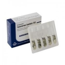500 amps Testosterone Enanthate (Iran), each £2.6
